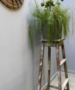 Vintage wooden plant table-1