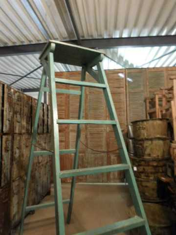 Old refurbished library ladder-2